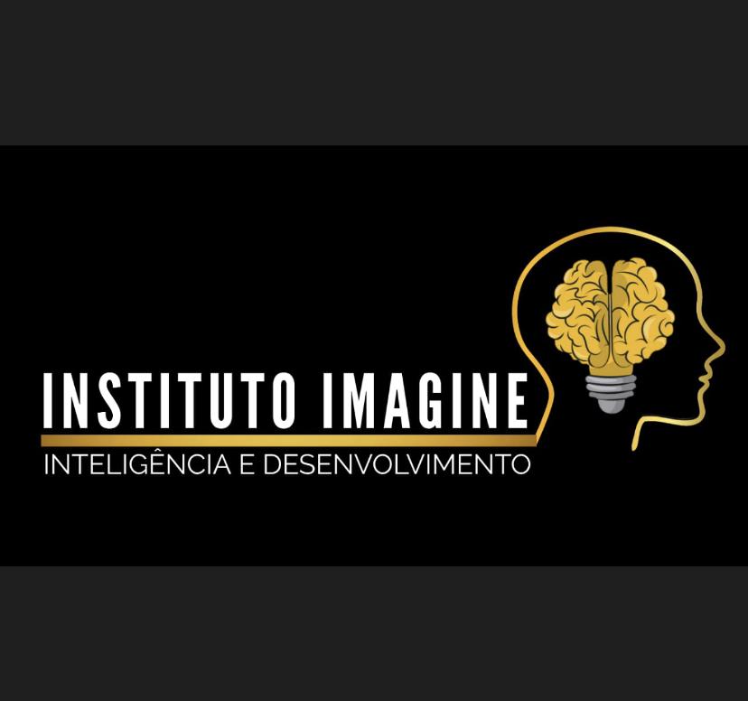 INSTITUTO IMAGINE INTELIGENCIA E DESENVOLVIMENTO